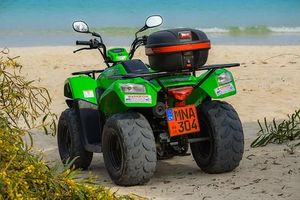 Rent A Buggy - 80986 selection
