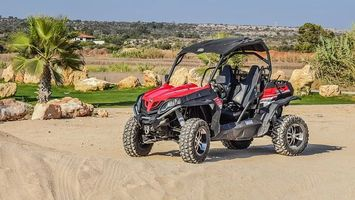 Rent A Buggy - 92367 bestsellers