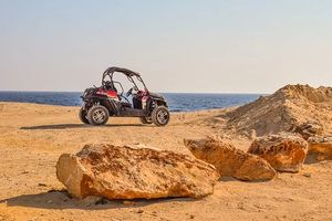 Rent A Buggy - 88303 options