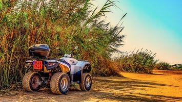 Rent A Buggy - 32019 prices