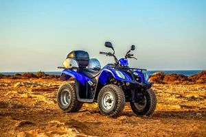 Rent A Buggy - 78200 selection